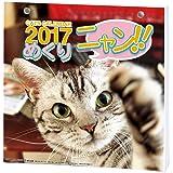 アートプリントジャパン 2017 ニャン!!めくり カレンダー リフィル No.017 1000080078
