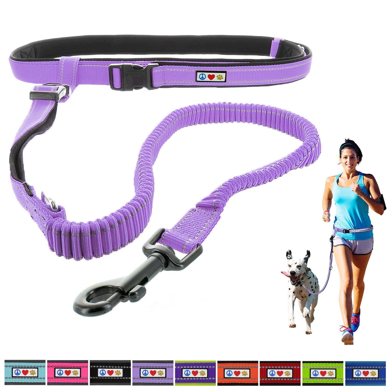 Pawtitas Reflective Padded Anti-Shock Running Dog Leash, Purple