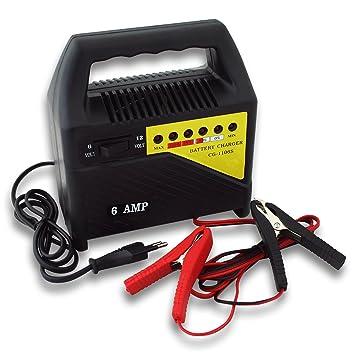 WilTec cargador baterías dispositivo carga 6V 12V 6A CG ...