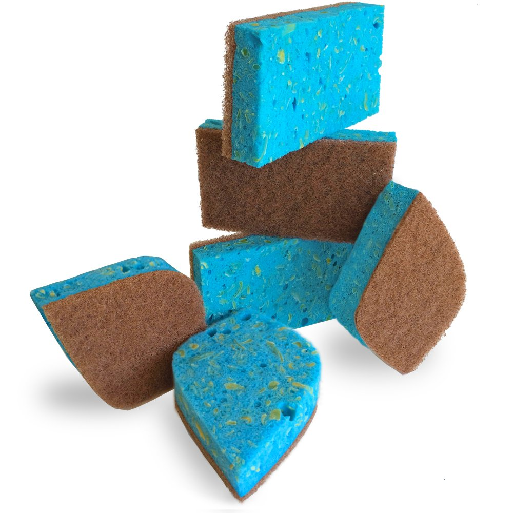 Pura Naturals Ever-Fresh Cleaning Sponges Inhibit Bacteria. Stay Fresh mildew-free Scent! Eco Kitchen/Household/Dish Sponges w/Walnut Scrubbers. 40x more durable. (6-pack | 48 Hour Infused Soap Blast) by Pura Naturals