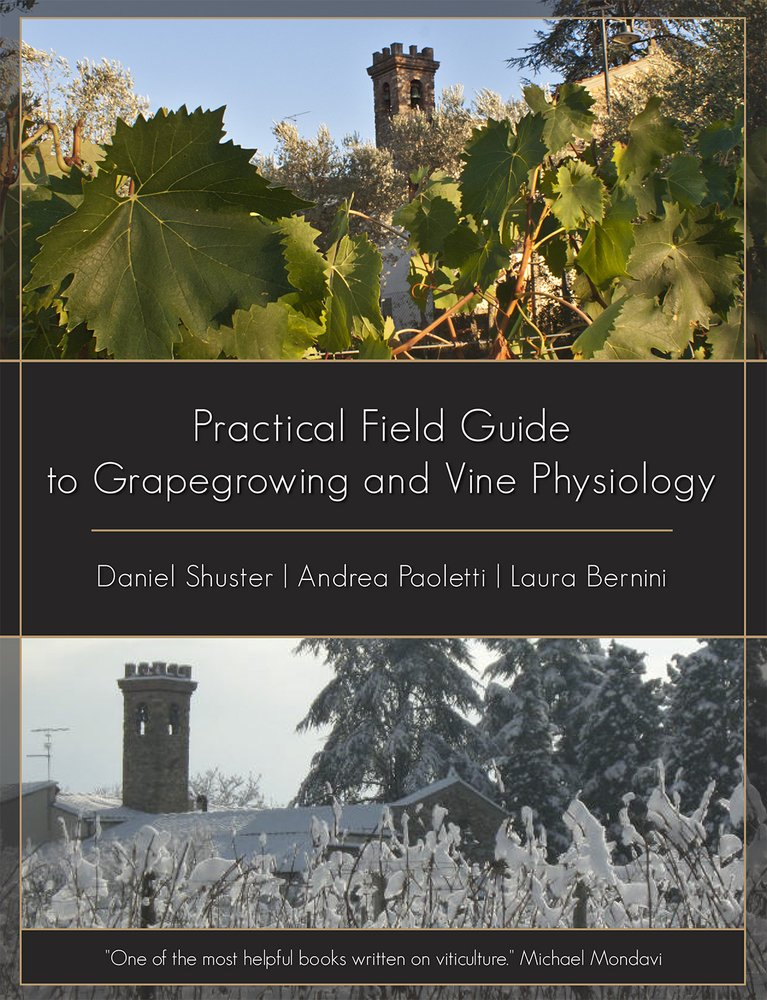 Practical Field Guide to Grape Growing and Vine Physiology: Daniel ...