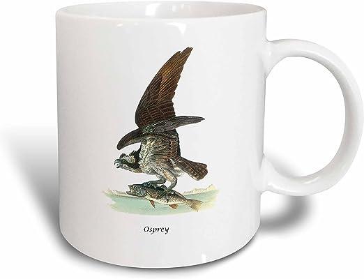 3dRose 114072/_2 Osprey By John James Audubon Mug 15 oz White