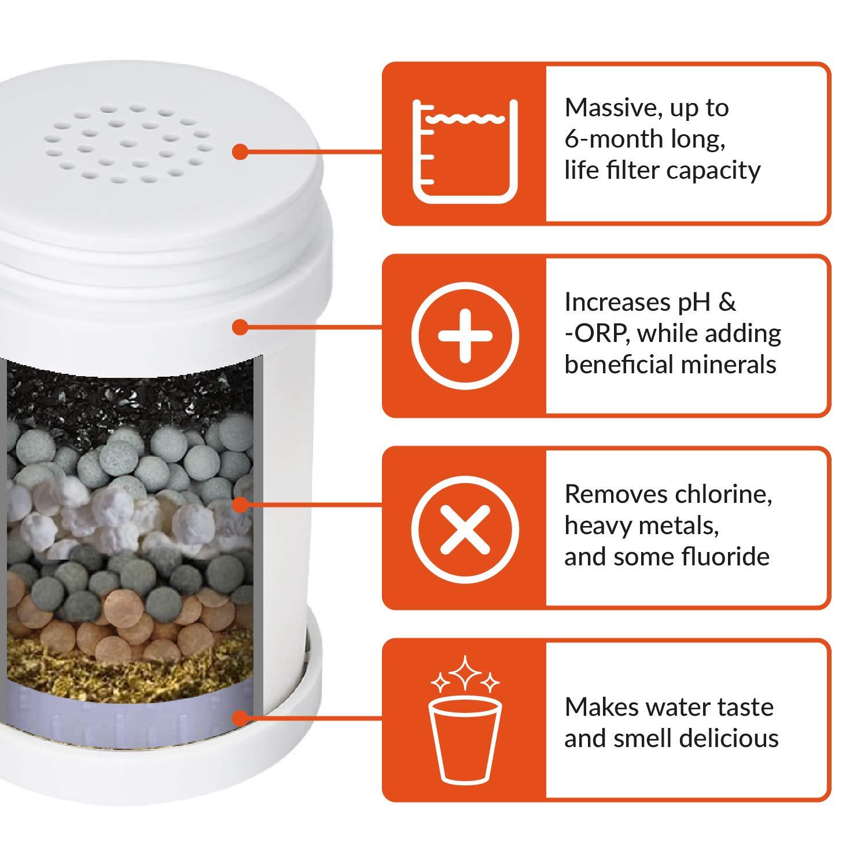 Compatibile con PH PURIFY batteri filtra Cloro Invigorated Water Cartuccia di Ricambio per Filtro Rubinetto PH006