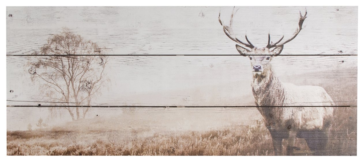 Graham & Brown Art for Home Stag Wall Art 42-244
