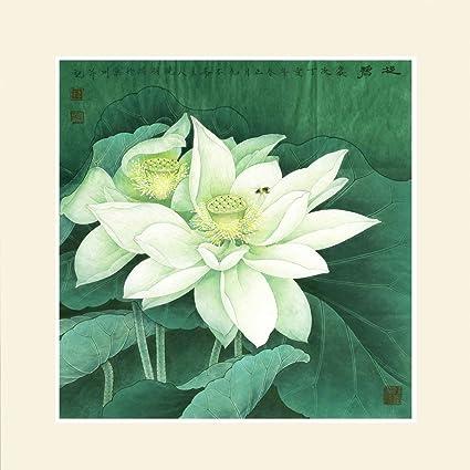 Amazoncom Ink Wash Chinese White Lotus Flower Painting Flowers