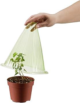 Relaxdays, Verde Set de 24 Mini invernaderos para Plantas, Protección contra el frío, Caracoles y Aves, PVC: Amazon.es: Jardín