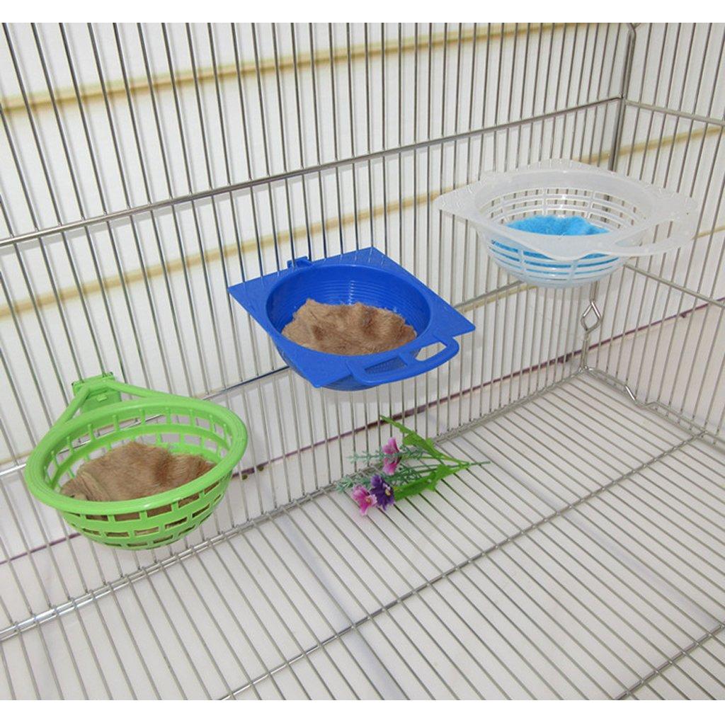 F Fityle Palstic Canary Nest Jaula para La Cría Canarios Finches ...