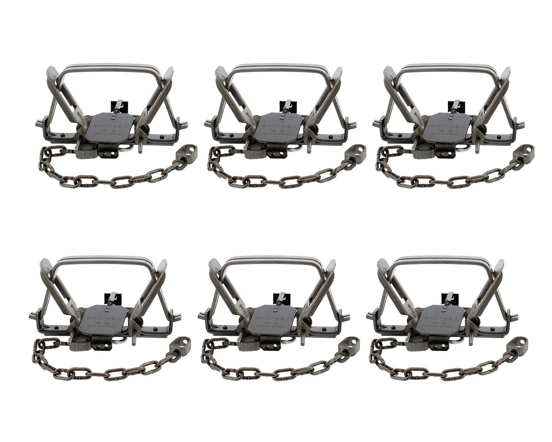 """Redneck Convent Duke 6"""" Inch Animal Leg Trap & Coil Spring 6-Pack – Duke #3 CS OS Offset Jaw Model 0501 – Bobcat, Coyote, Lynx"""