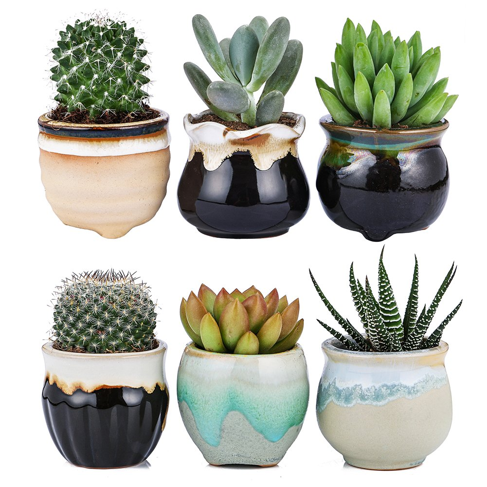 Jomass Flowing Glaze Ceramic Succulent Plant Pot 6pcs 2.5 Inch Cactus Flower Plant Pot Container Planter Black&White Base Serial Set by Jomass