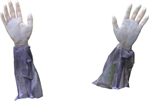 Forum Novelties Zombie Hands & Arms - (2) Zombie Lawn Stakes