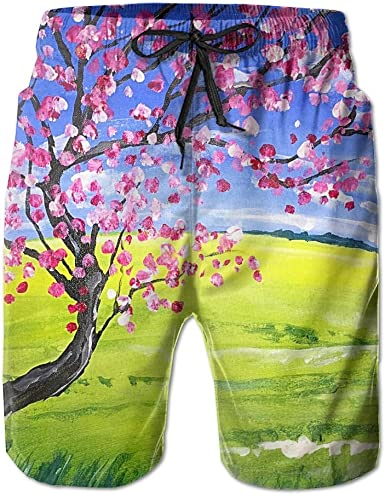 Tydo Flowers Painting Mens Beach Shorts Quick Dry Swim Trunks Surf Board Pants With Pockets For Men