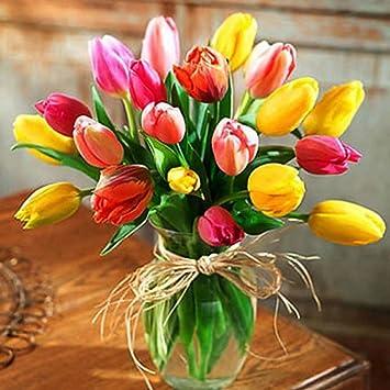 5d Bild Von Strass Diamant Malen Nach Zahlen Colorful Tulpen Vase