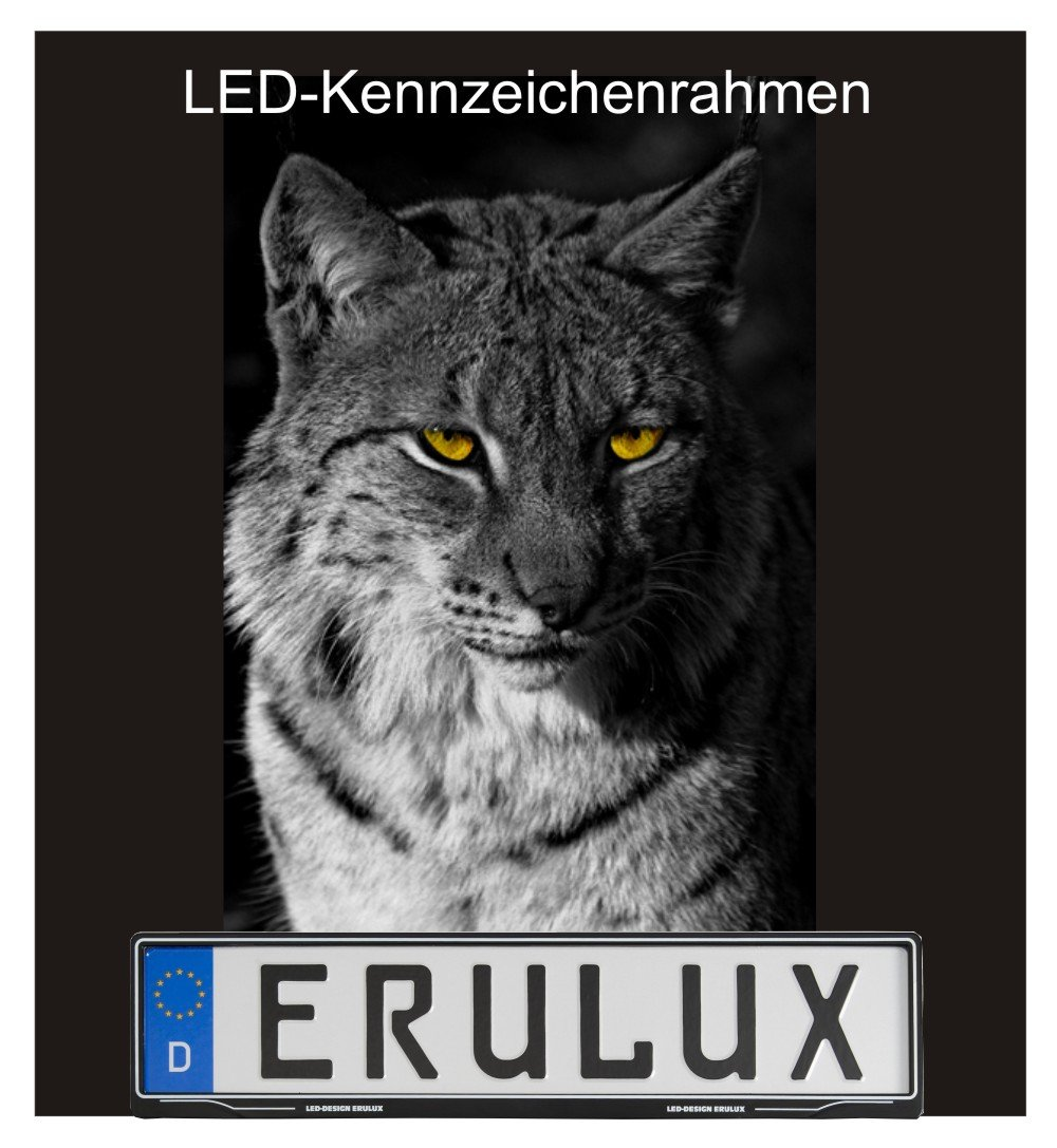 Kennzeichenrahmen LED Black: Amazon.co.uk: Car & Motorbike