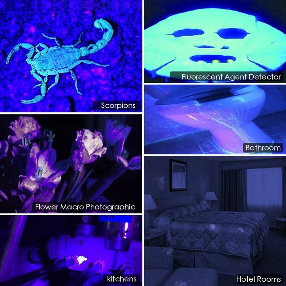 pile rechargeable int/égr/ée Lampe torche UV lumi/ère noire lampe de poche ultraviolette zoomable 395nm D/étecteur de taches durine pour chiens de compagnie de chats pour chiens