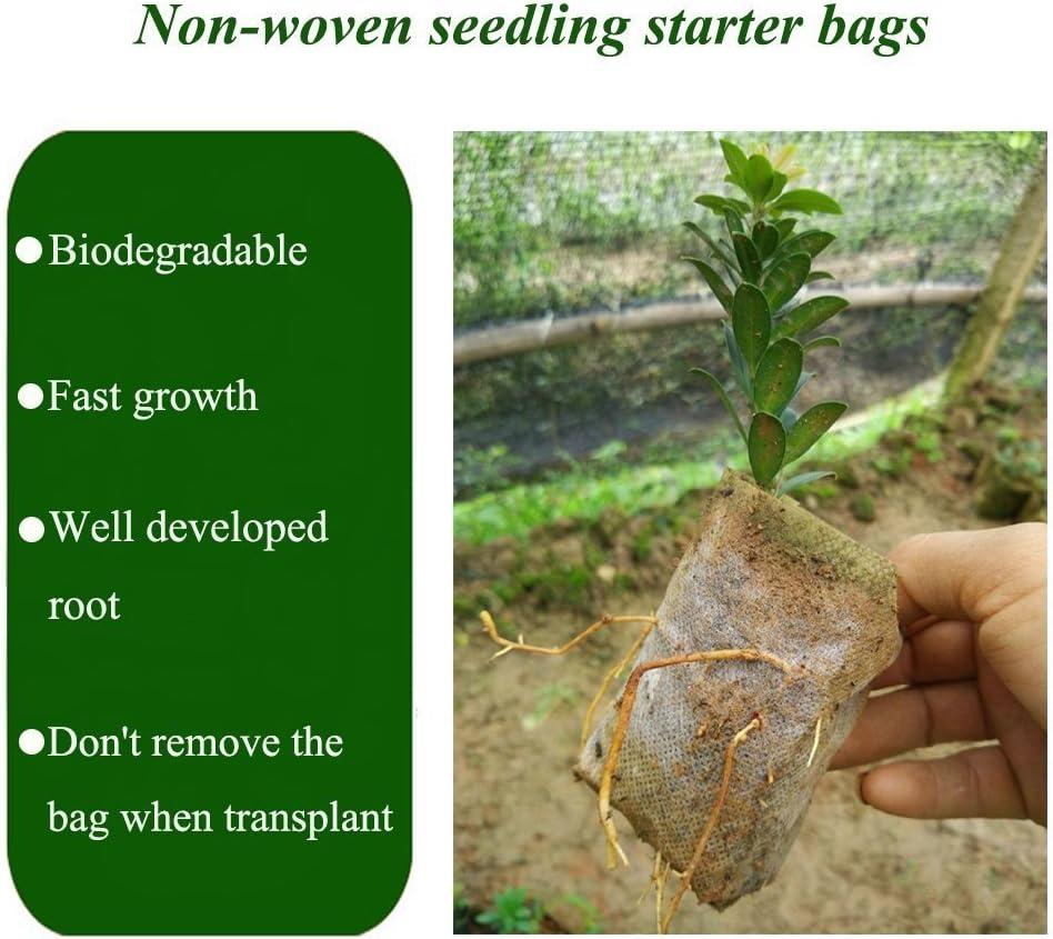 Plantar Bolsas, 200pcs Biodegradable papel Mochilas Bolsas De ...