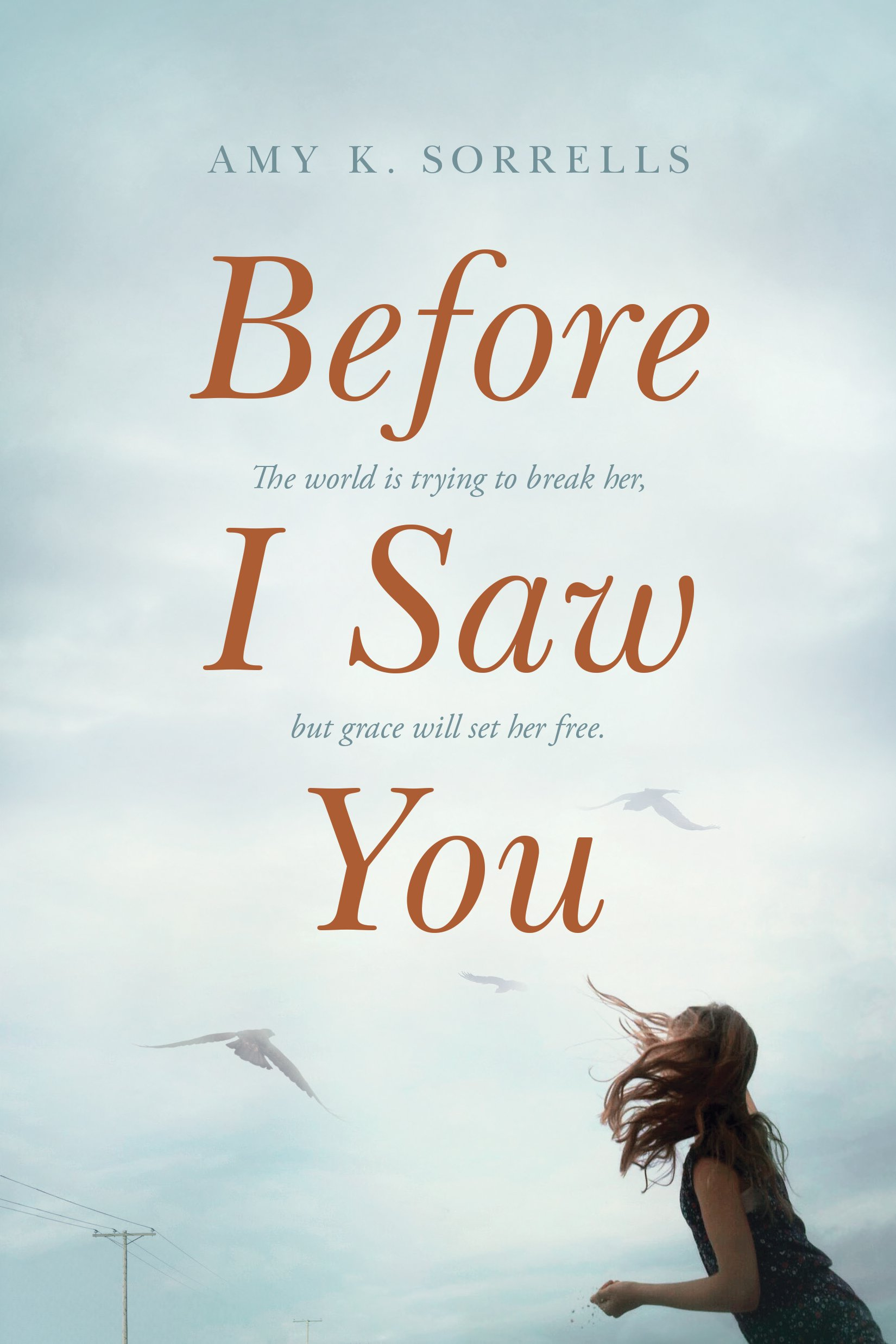 Image result for before i saw you amy sorrells