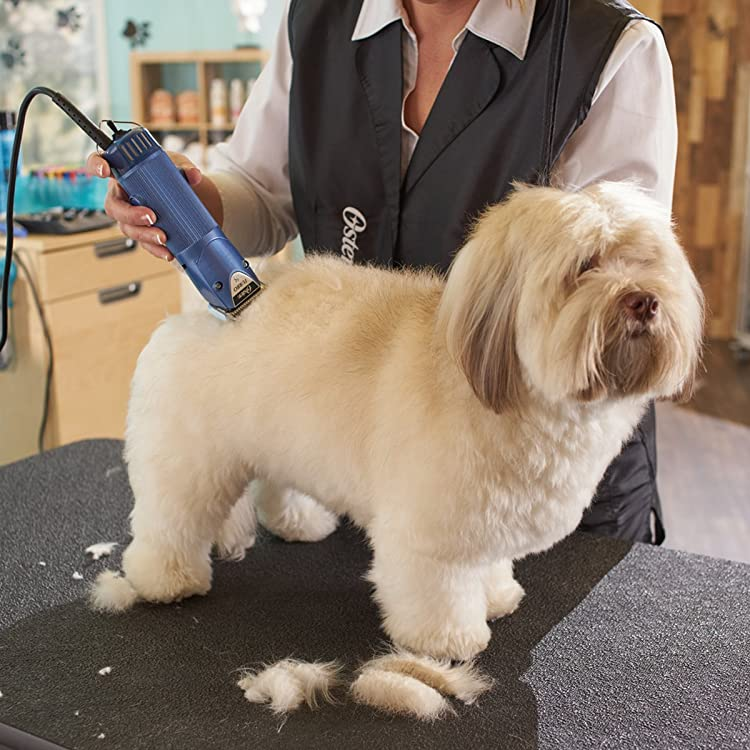 Best dog grooming clippers what are the best dog clippers best dog grooming clippers solutioingenieria Choice Image