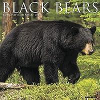 Black Bears 2020 Wall Calendar