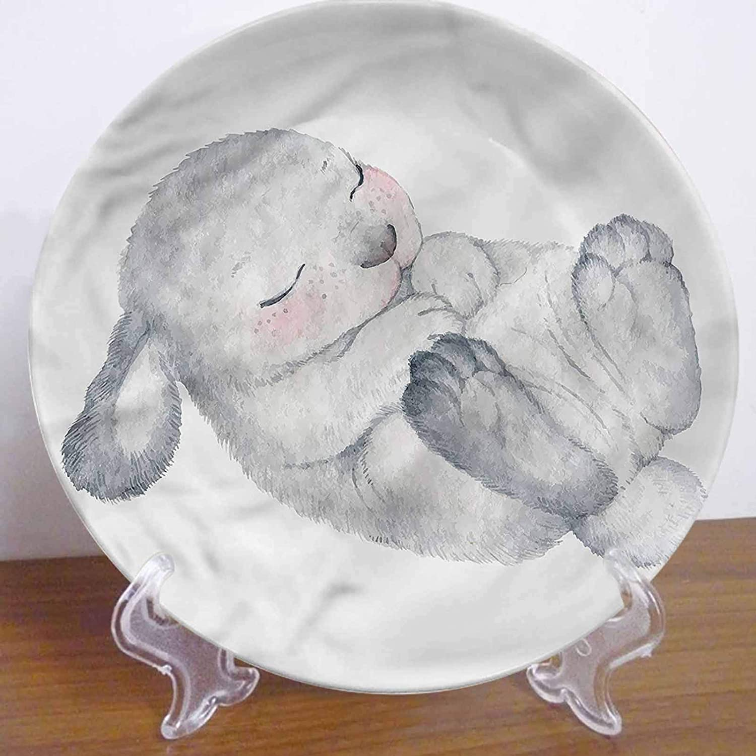10 Inch Rabbit Pattern Ceramic Hanging Decorative Plate,Cute Little Bunny Sleeping Ceramic Stoneware Decorative Plate Ceramic Ornament for Home&Office Wall Decors Family Sentiment