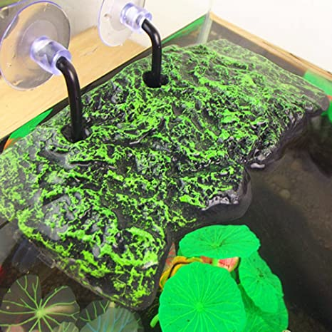 UEETEK Turtle - Plataforma flotante para base de cisterna con ventosas: Amazon.es: Productos para mascotas