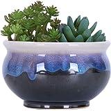 VanEnjoy Large Ceramic Succulent Pot, Multicolor Colorful Flowing Glazed, Indoor Home Décor Cactus Flower Bonsai Pot…
