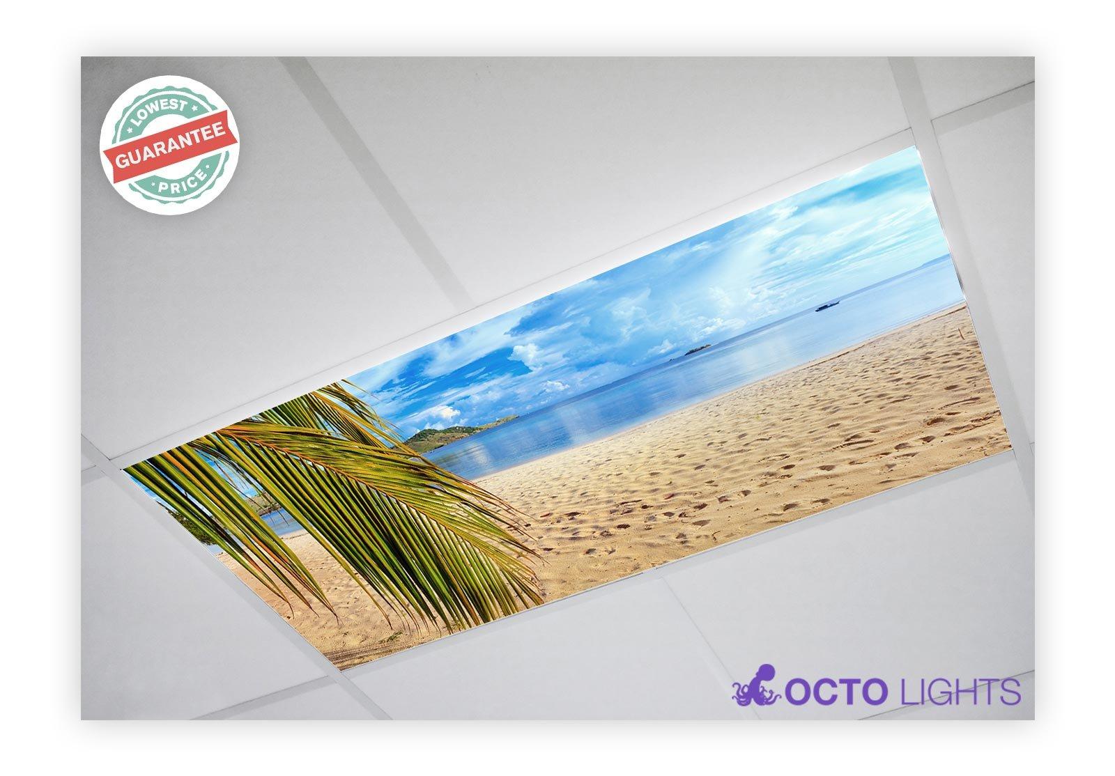 Beach 004 2x4 Flexible Fluorescent Light Cover