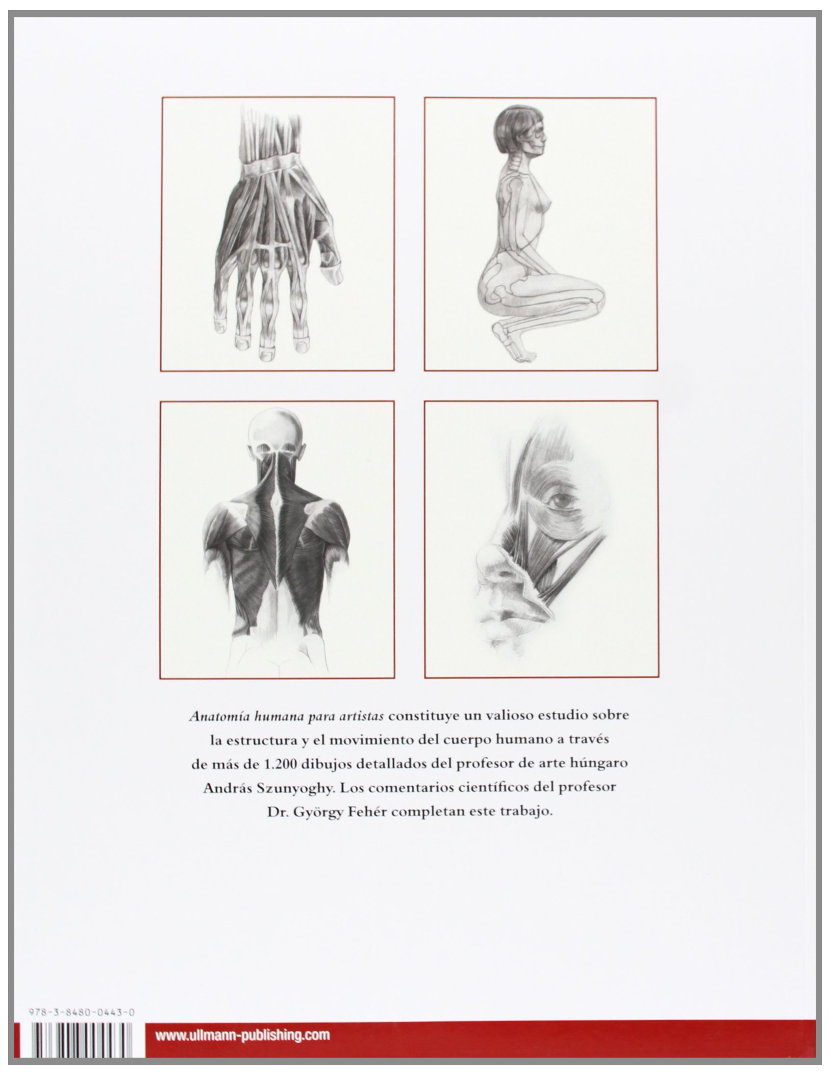 Anatomía Humana: Amazon.es: András Szunyoghy, György Fehér: Libros