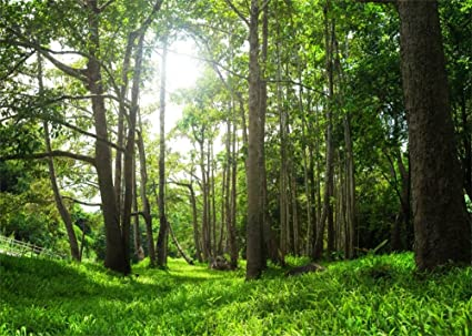 amazon com leowefowa 7x5ft spring backdrop jungle forest backdrops