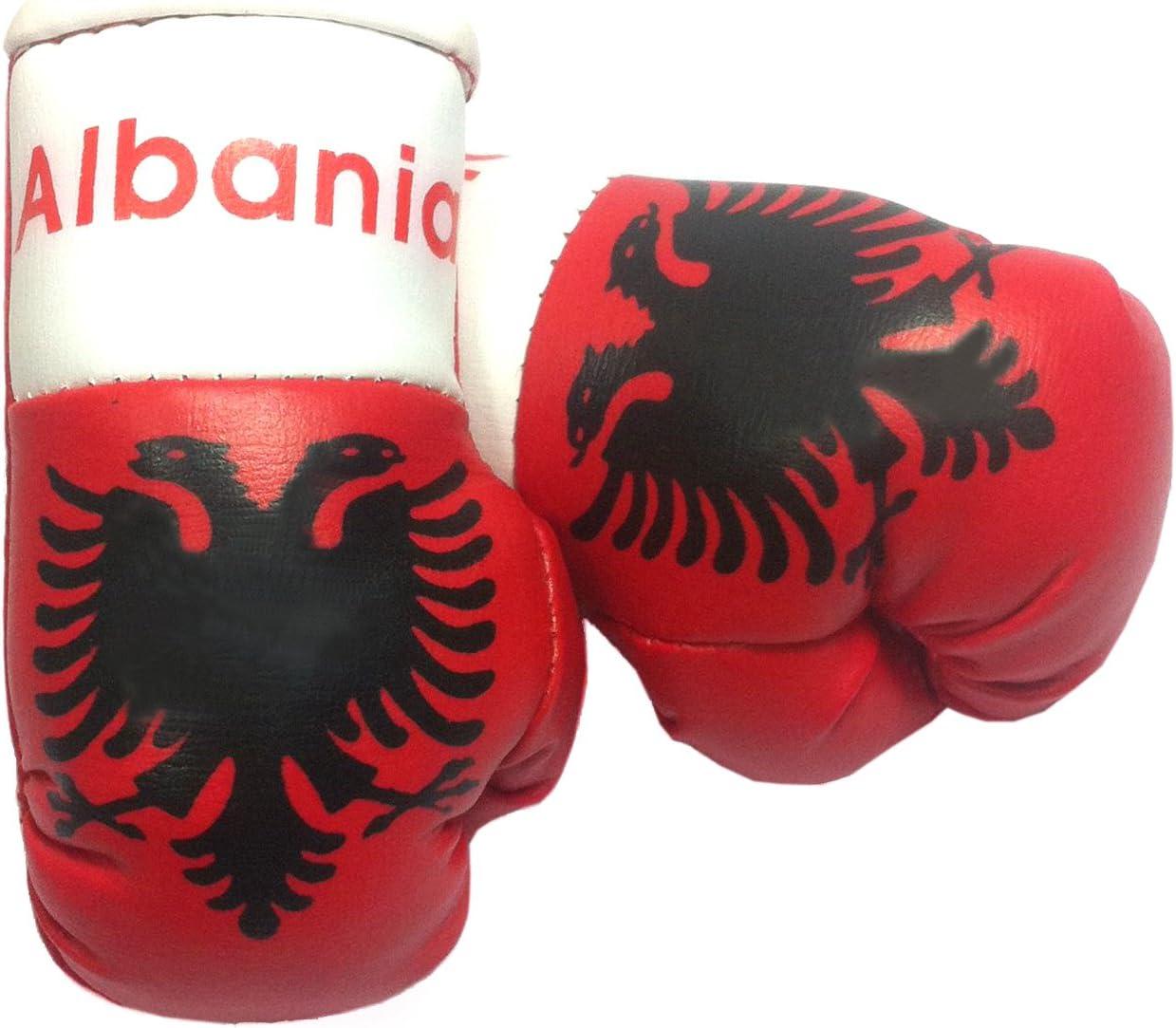 Doktor Hardstuff Mini Boxhandschuhe Albanien Auto