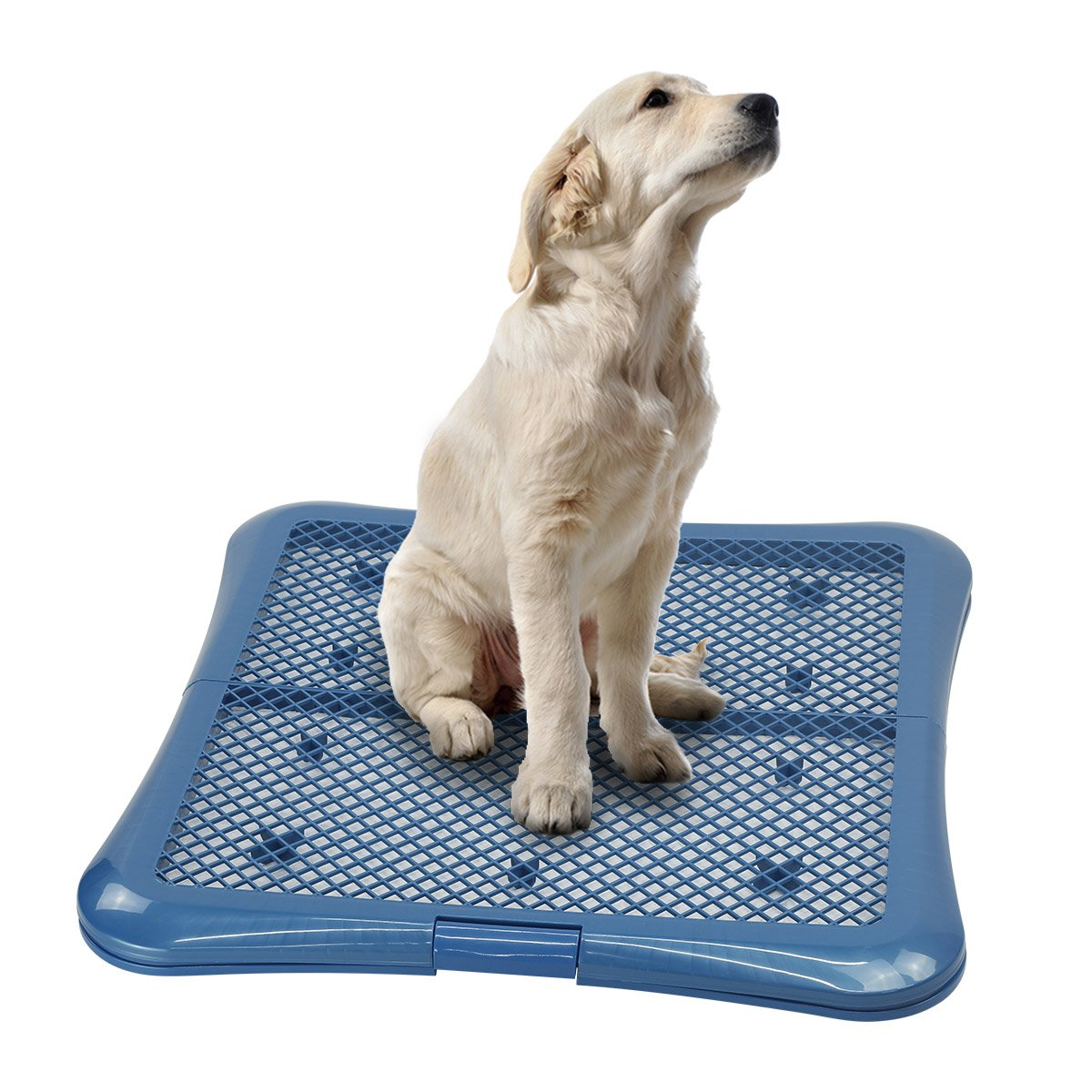 Petphabet Training Pad Holder Floor Protection Dog Pad Holder Mesh Training Tray (L) by Petphabet