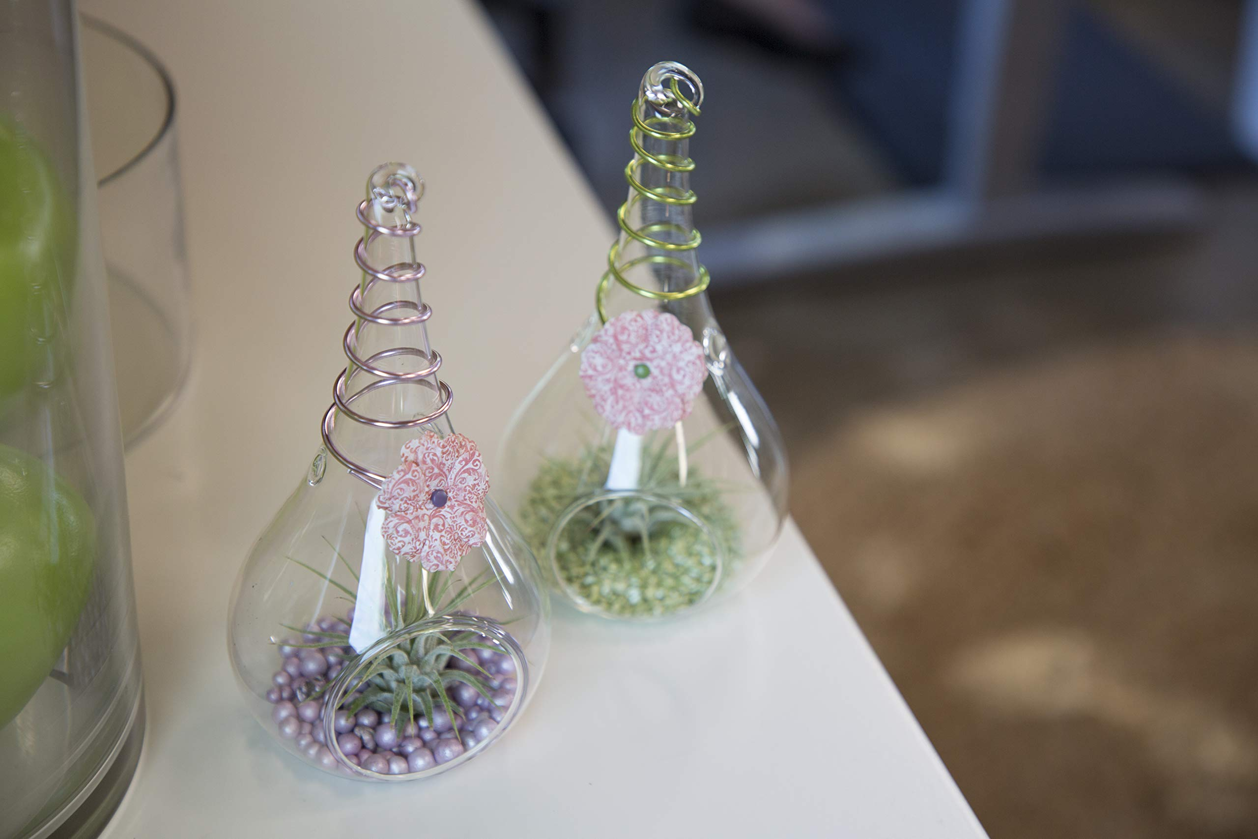 LiveTrends Design Set LT- Blissful Eden Two (2) Color Varieties, Purple/Green by LiveTrends Design