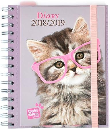 Grupo Erik Editores Studio Pets - Agenda escolar con diseño gato ...