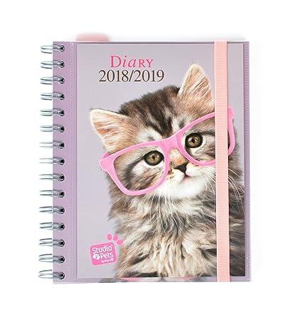 Grupo Erik Editores Studio Pets - Agenda escolar con diseño gato, 15.5 x 19 cm