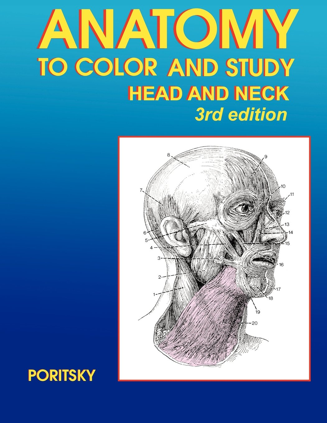 Anatomy to Color and Study Head and Neck 3rd edition: Ray Poritsky ...