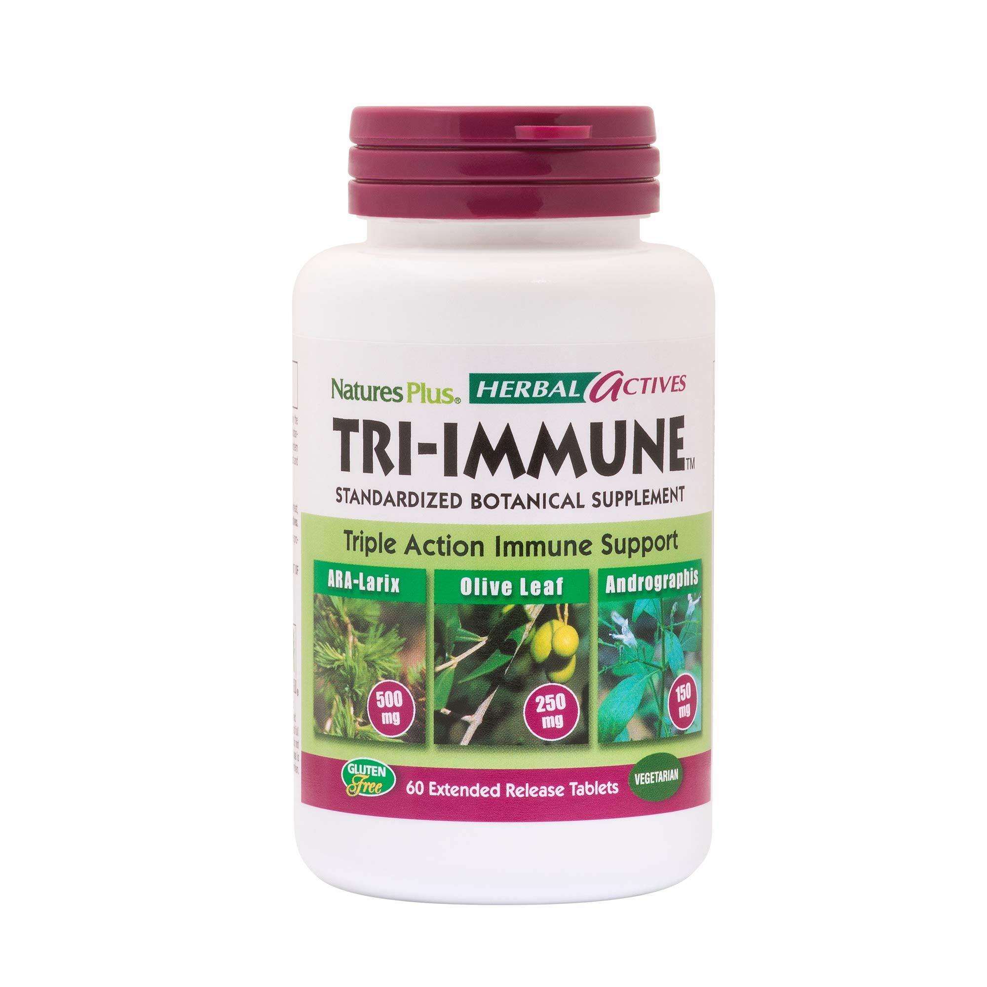Natures Plus Herbal Actives Tri Immune - 60 Vegan Tablets, Extended Release - Olive Leaf, Arabinogalactans, Andrographis & Vitamin C Supplement - Vegetarian, Gluten Free - 30 Servings