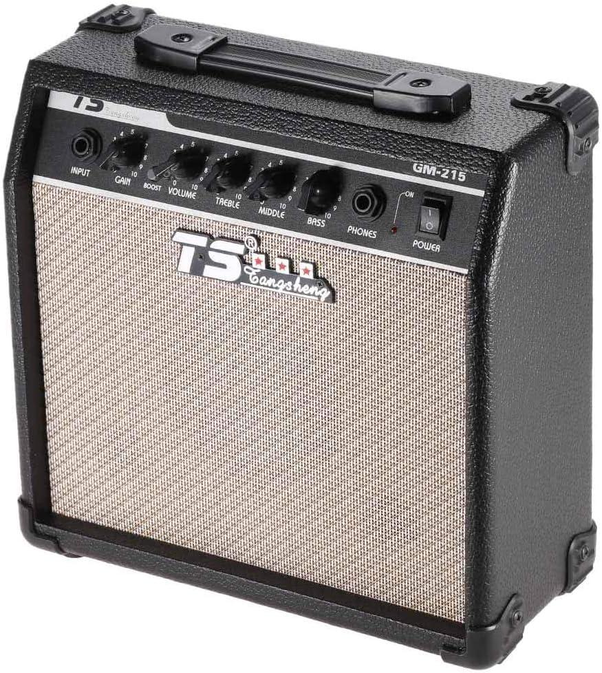 Raitron GM-215 - Amplificador de Guitarra eléctrica Profesional de ...