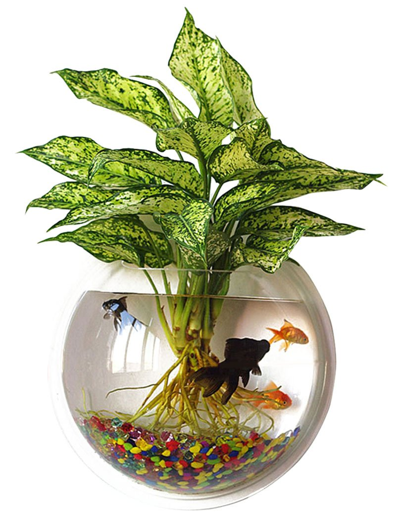 Outgeek Wall Fish Bubble Wall Hanging Bowl Clear Acrylic Vase Flower Plant Pot Aquarium 9in