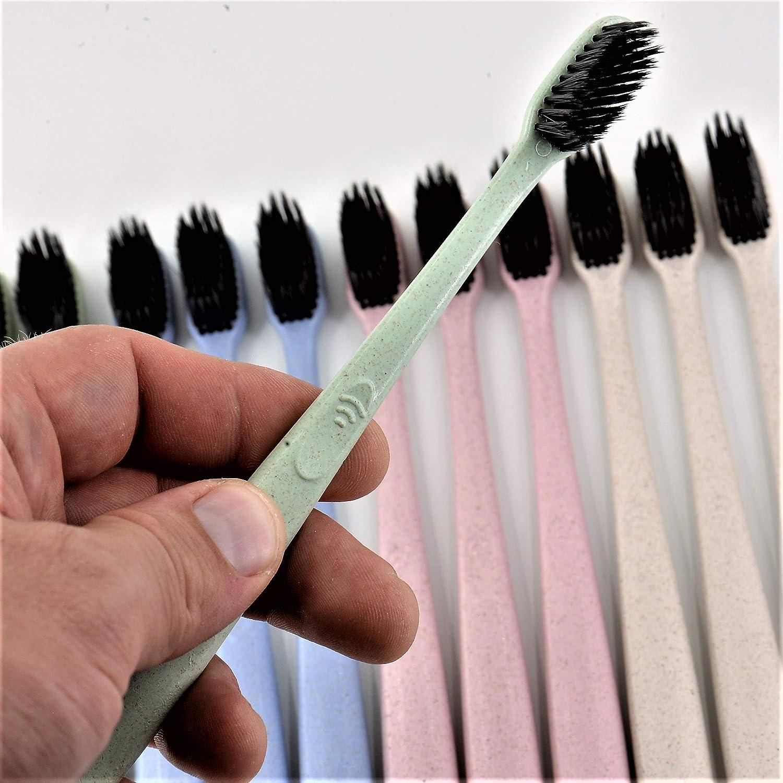 Adult Toothbrush Set Green Pastel Series Yabber Pink Sandy-Beach 12 Pack - 1 Year 3 3 3 Blue 3