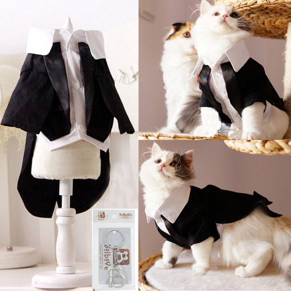 i'Pet Handsome Prince Cat Bridegroom Wedding Tuxedo Faux Twinset Design Small Boy Dog Formal Attire Doggy Party Wear Puppy Birthday Outfit Doggie Photo Apparel with Buttons Holiday Fabric Clothes Halloween Classics Collection Costume (Black Tuxedo, Medium
