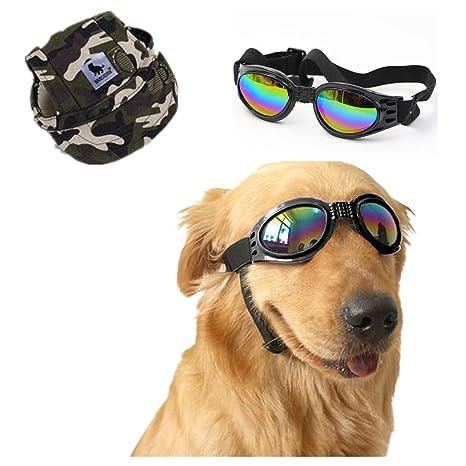 NUMAMA - Gafas de Sol para Perro y Gorra de béisbol, Gafas ...