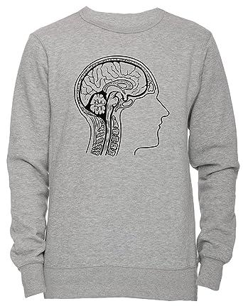 Gehirn Anatomie Unisex Herren Damen Jumper Sweatshirt Pullover Grau ...