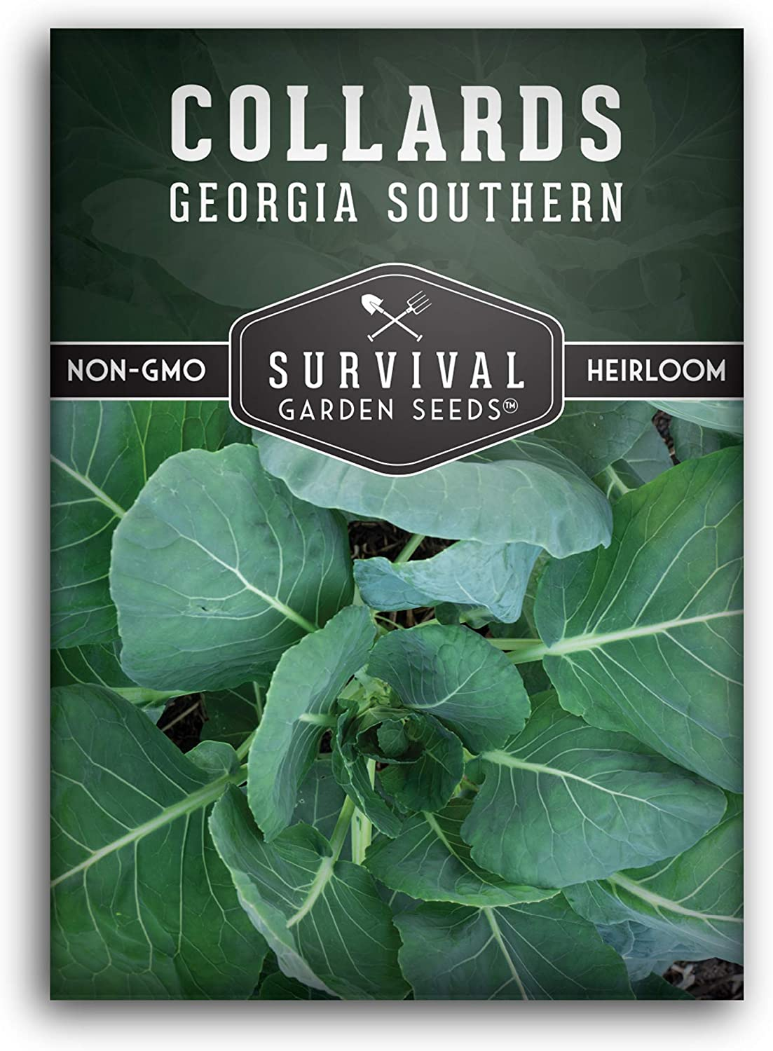 Survival Garden Seeds - Georgia Southern Collards Seed for Planting - Packet with Instructions to Plant and Grow Your Home Vegetable Garden - Non-GMO Heirloom Variety