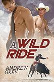 A Wild Ride (The Bullriders Book 1)