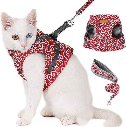 NATRUSS Correa Acolchada para el Pecho del Gato, Chaleco para Gatos, Duradera y Suave para Caminar con Gatos para Caminar con Gatos(Red, S): Amazon.es: Productos para mascotas