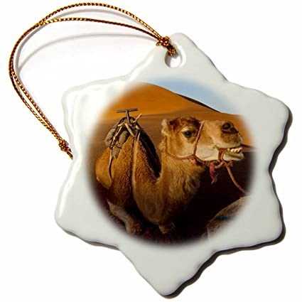 3-Inch 3dRose orn/_105277/_1 I Believe in Leaf Blowers-Snowflake Ornament Porcelain
