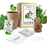 Indoor Herb Garden Starter Kit - Non GMO - Seed Packets, Pots, Markers, Soil Mix - Fresh Basil, Cilantro, Parsley, Sage, Thym