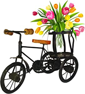 sdshopping Metal Rickshaw Cycle Showpiece Flower Vase for Home