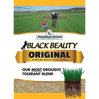 Jonathan Green 10318 Black Beauty Grass Seed Mix, 5 Pounds: Garden & Outdoor