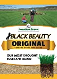 Jonathan Green 10316 Black Beauty Grass Seed, 50-Pound