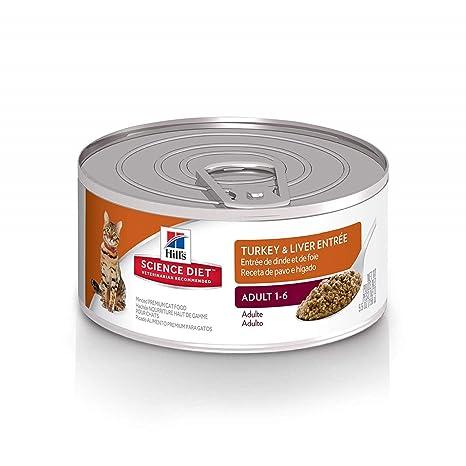 00ad4105 Amazon.com : Hill's Science Diet Wet Cat Food, Adult, Minced Turkey ...
